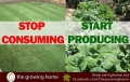 Start producing your own food